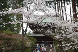 Kamakura3301